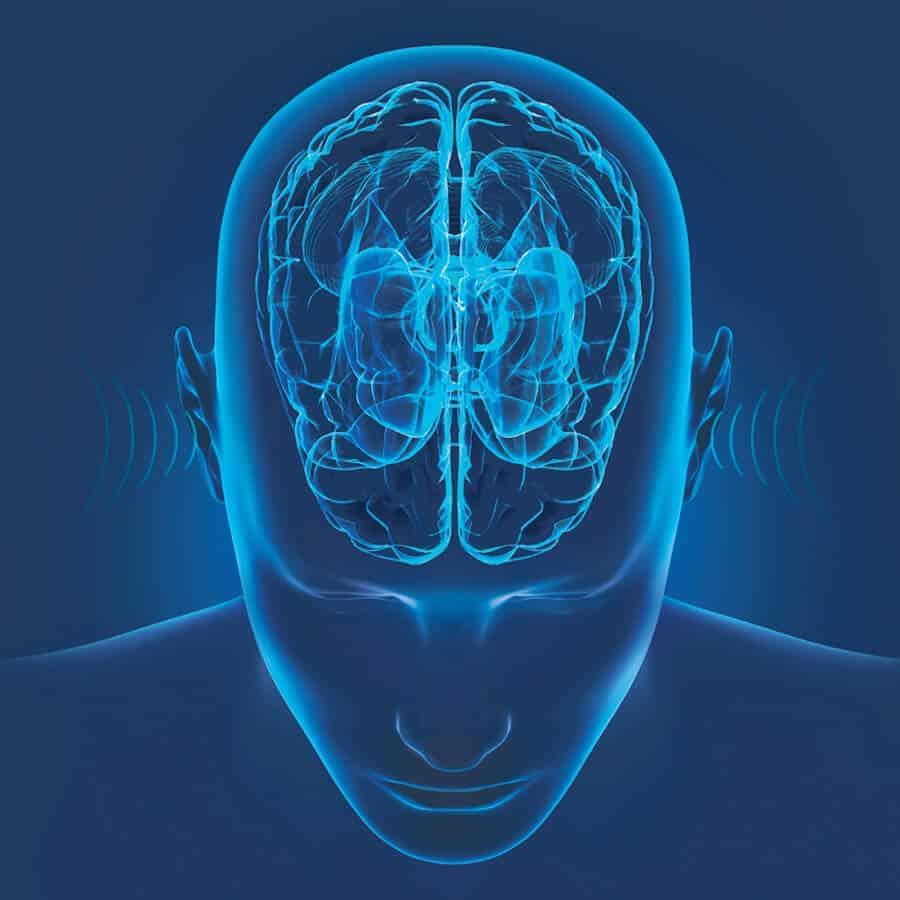 brain interpreting sound waves